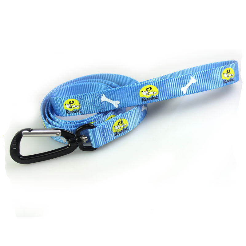 Silkscreen Printed Nylon Dog Leash Pet Collar with Carabiner